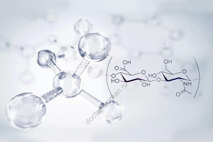 Метаболизм гиалуроновой кислоты