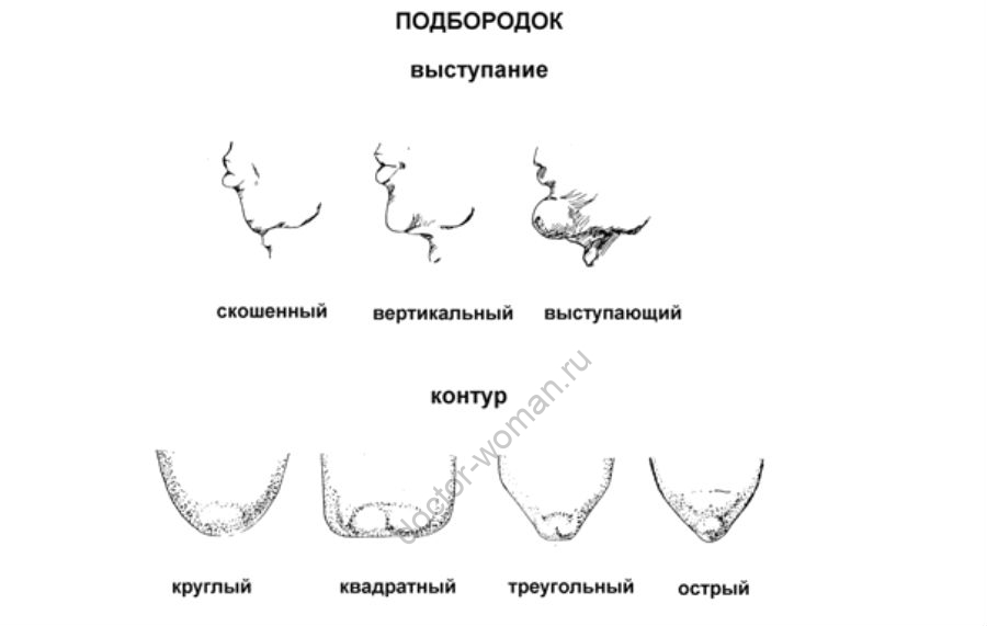 Разновидности подбородка
