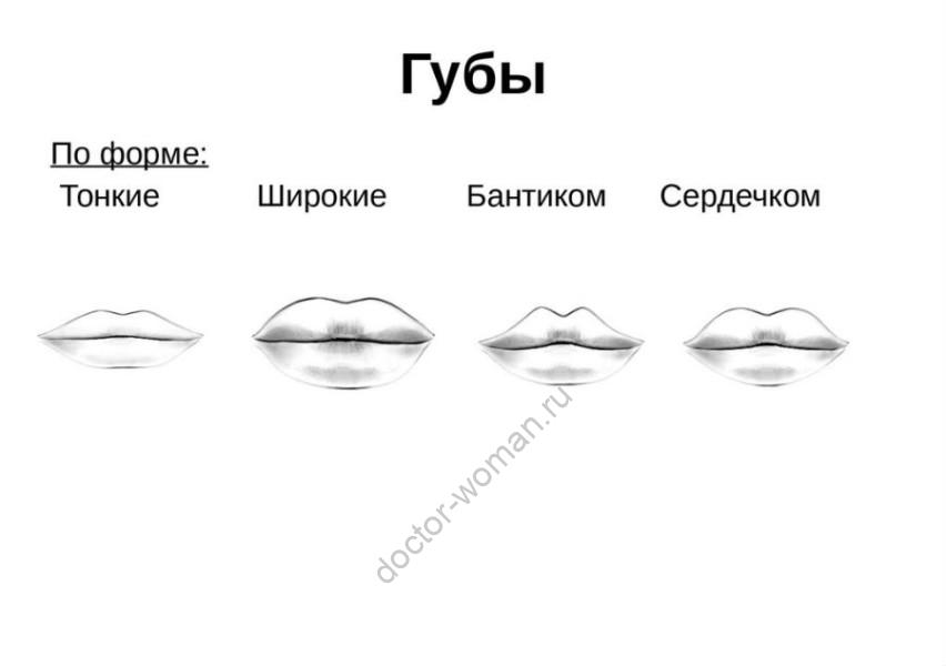 Рисунок 1. Формы губ