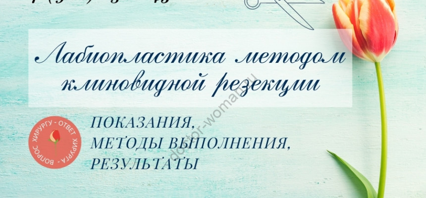 Лабиопластика методом клиновидной резекции. Автор фото А. Герасимова - Даллес